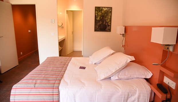 Mercure Aix-en-Provence Sainte-Victoire - room