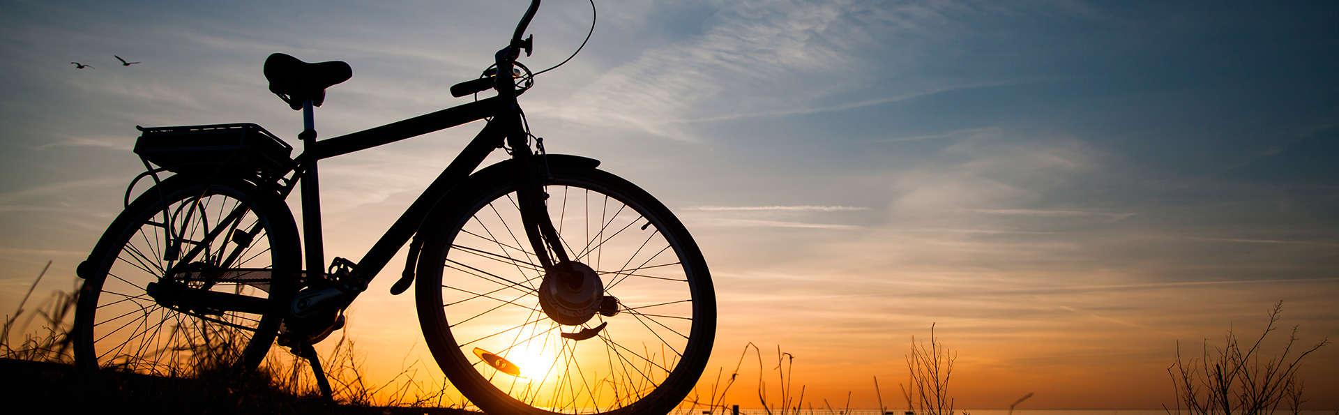 Explorez la belle région naturelle de Veluwe à vélo (à partir de 2 nuits)