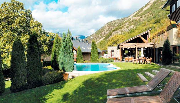 Escapade dans les Pyrénées avec foyer et spa avec réduction sur activité (à partir de 2 nuits)