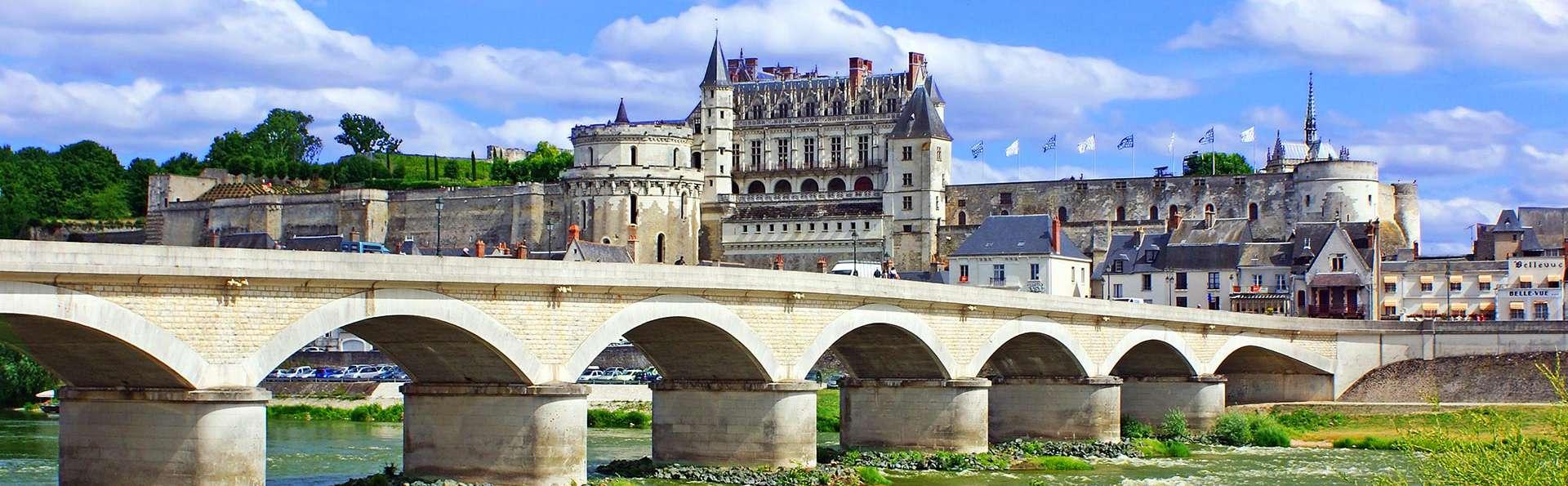 Château de Noizay - edit_pont-d_Amboise.jpg