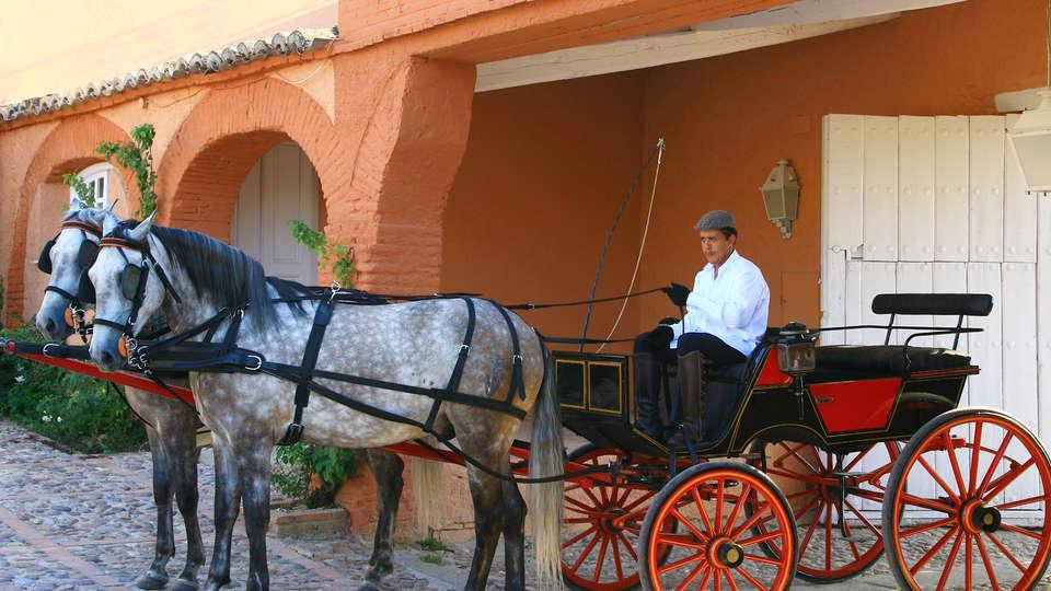 Hotel Valdepalacios Gourmand 5* GL - edit_Coche_de_caballos.jpg