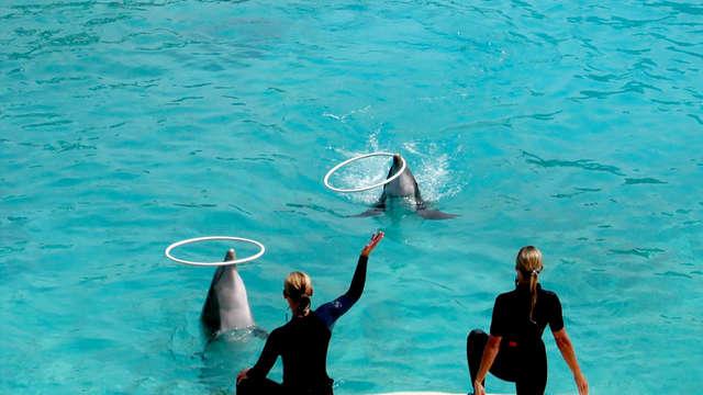 Passez une journée au Parc Aquatique Marineland à Antibes
