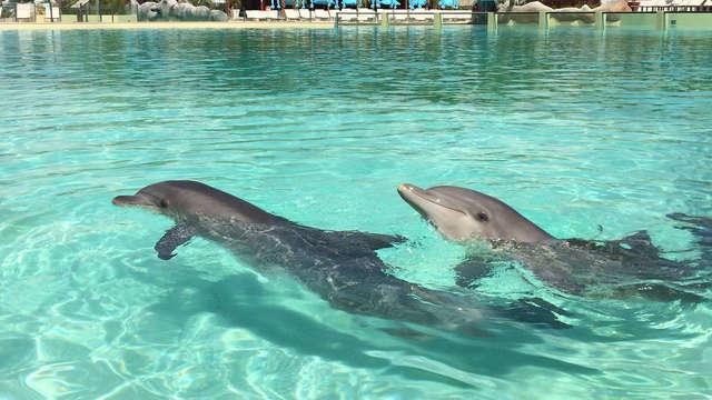 Junto a Antibes, con acceso al parque acuático de Marineland