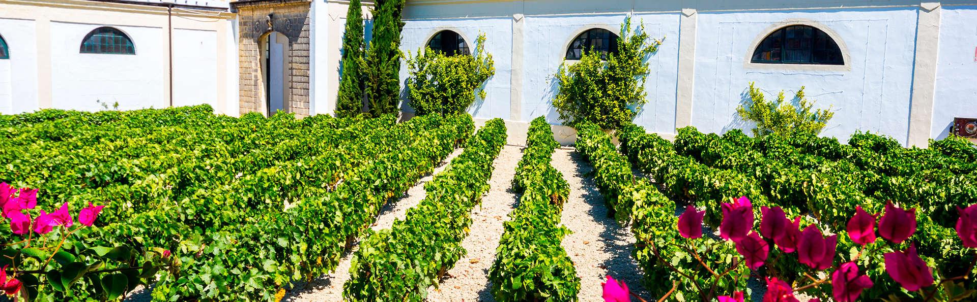 Hotel Jerez & Spa - edit_jerez1.jpg