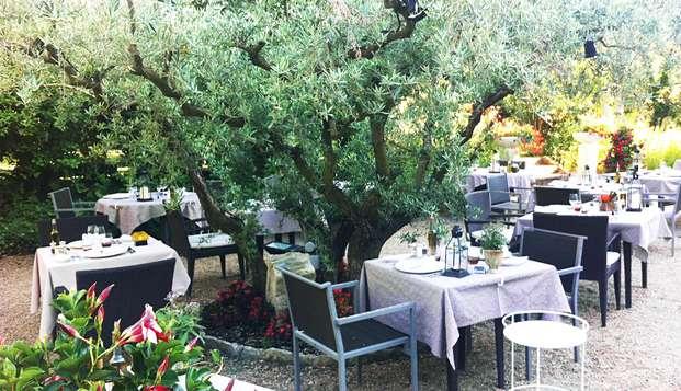 Cena gastronómica en Saint-Remy-de-Provence