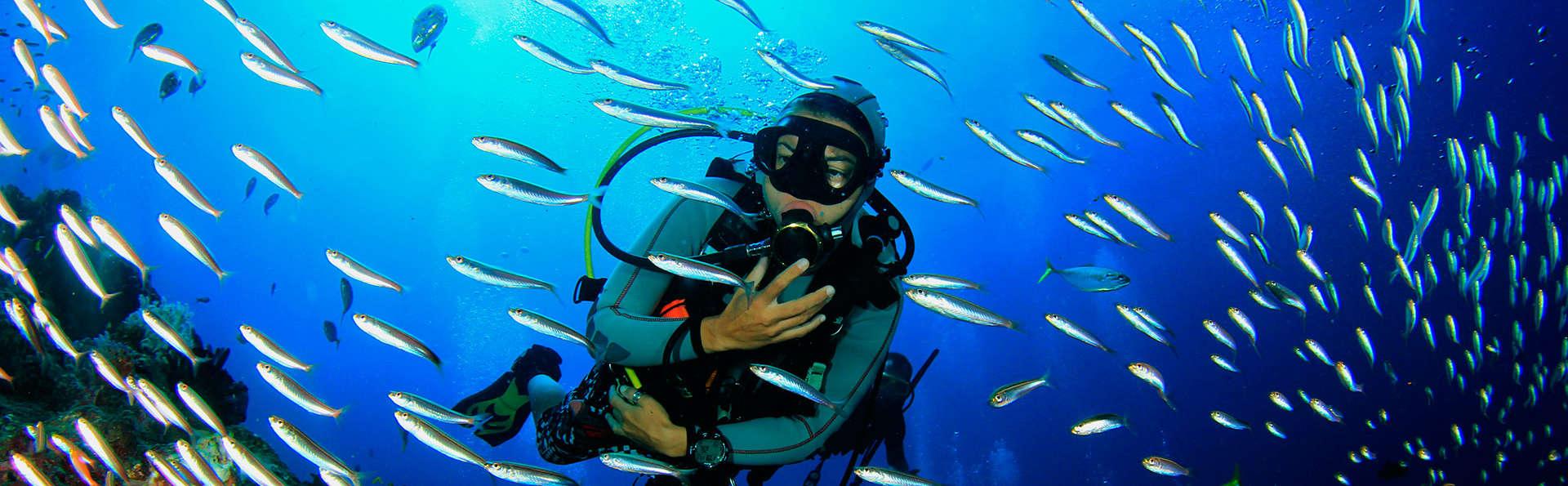 Plongée en apnée dans le plus grand aquarium d'Europe