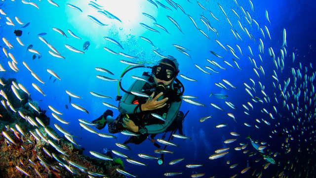 Snorkelen in het grootste snorkel- en duikcentrum van Europa