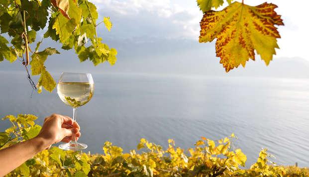 Escapada con visita a una bodega y degustación de vinos en Saumur