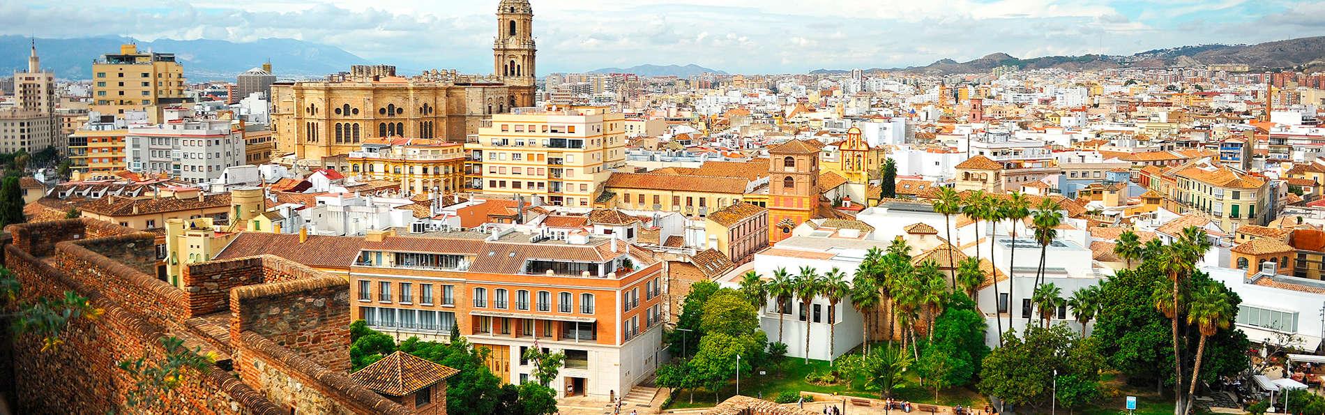 Hilton Garden Inn Málaga - edit_malaga23.jpg