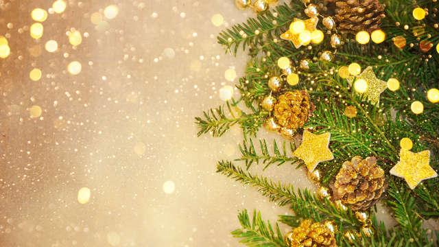 Beleef een magische kerst tijdens uw verblijf in een gerenoveerd kasteel nabij Dinant