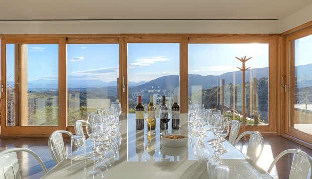 Romanticismo con chimenea, bombones y vistas a los viñedos en Gratallops