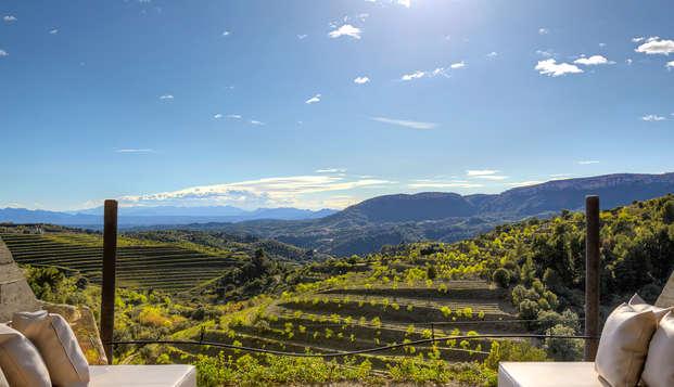 Descubre el Priorat entre viñas y vino cerca de Tarragona