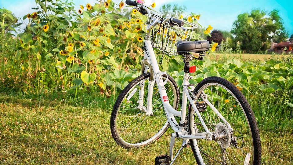 Le Charleston - EDIT_bike.jpg