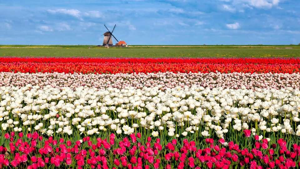 Golden Tulip Alkmaar - EDIT_destination4.jpg