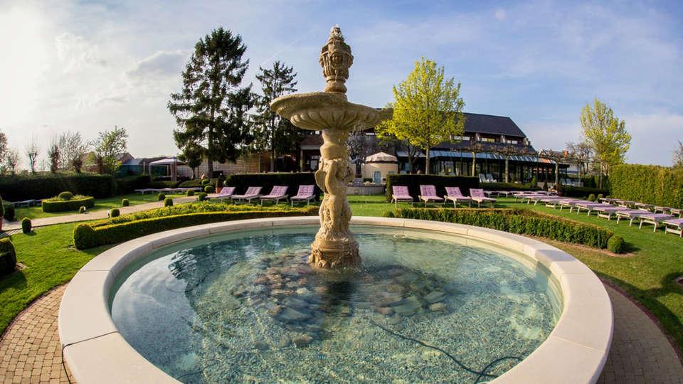 Kuurhotel en wellnesscentrum Yolande Buekers - edit_garden5.jpg