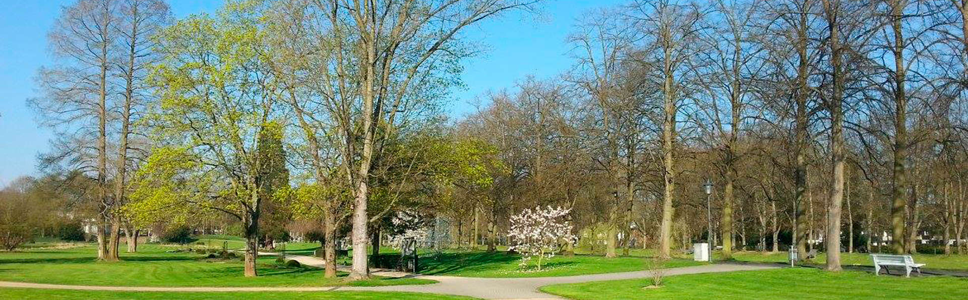 Dorint Parkhotel Bad Neuenahr - edit_park11.jpg