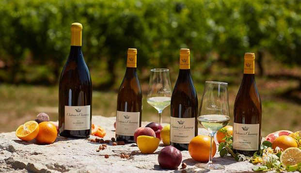 Week-end et dégustation aux abords de Chalon-sur-Saône