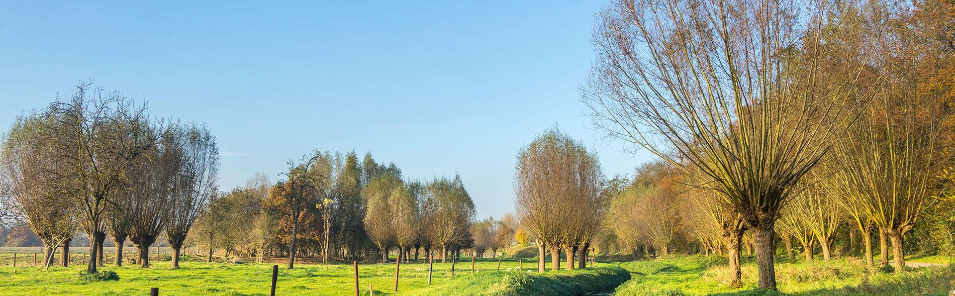 De Limbourg Sittard - Edit_Limburg.jpg