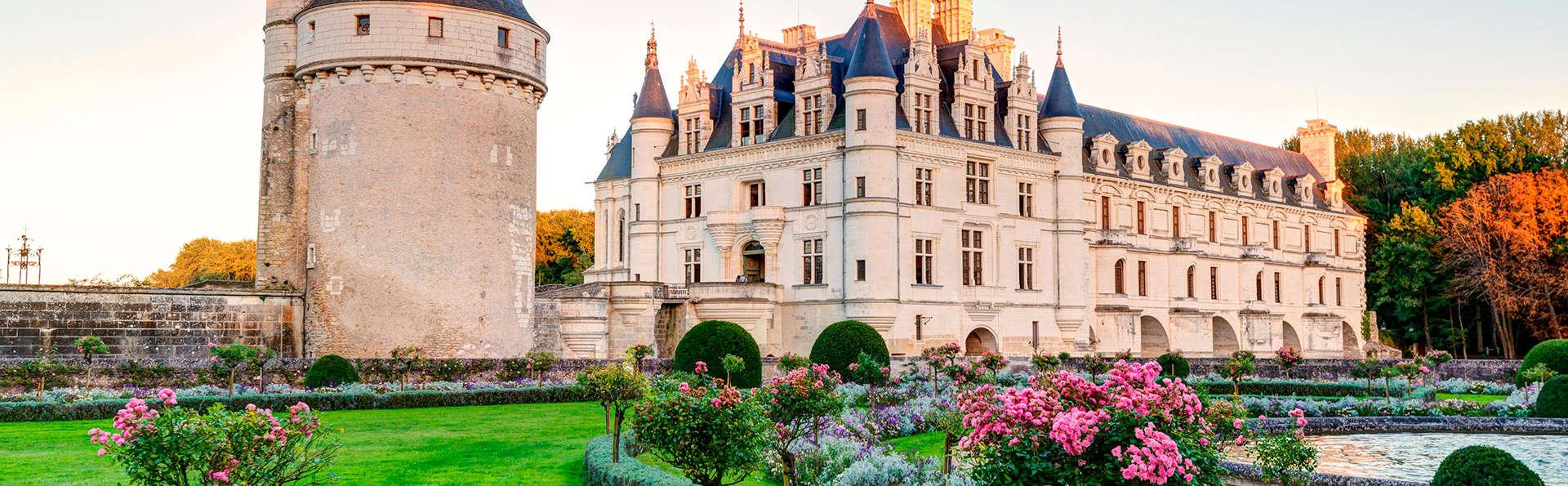 Point-de-chute parfait à Tours avec visite du Château de Chenonceau
