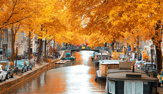 Découvrez les nombreux attraits d'Amsterdam