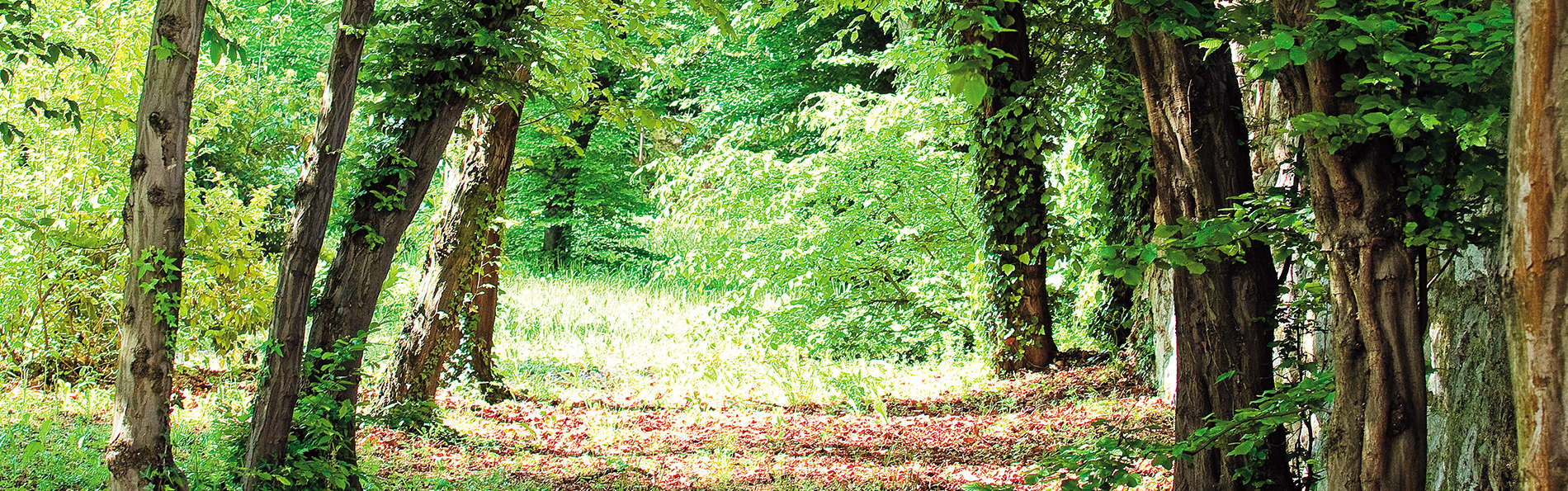 Le Manoir d'Agnès - edit_destination1.jpg