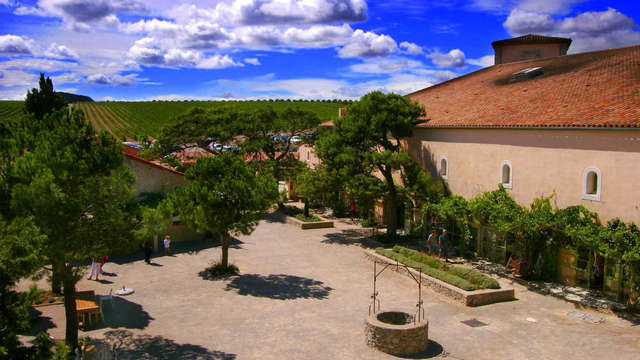 Chateau l Hospitalet - Garden