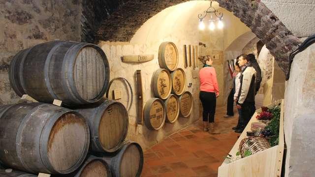 Visita guiada y degustación en el Museo del Vino Ribera del Duero (en Aranda del Duero) para 2 adultos