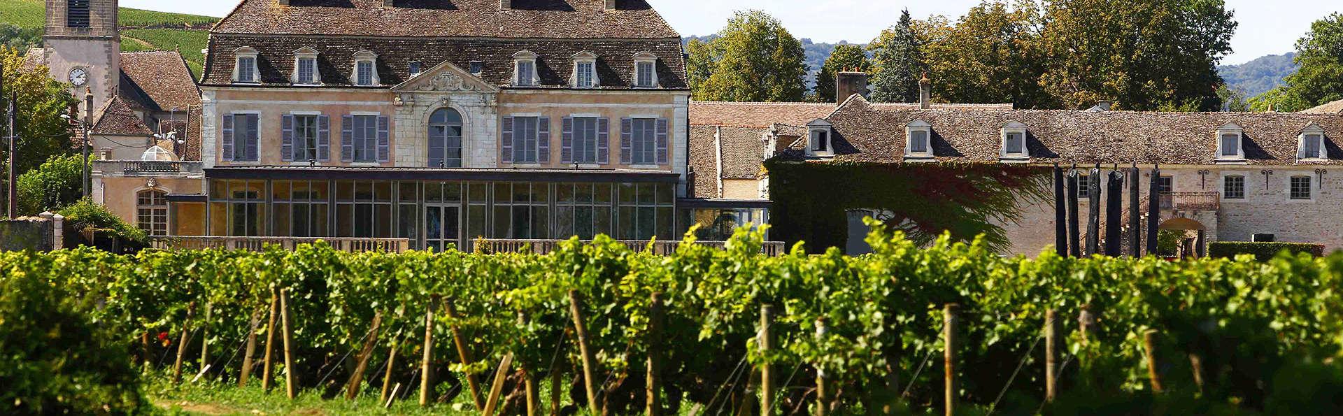 Dégustation et détente dans un château sur la Route des Vins