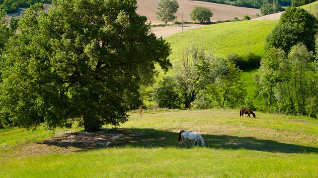 Dans le cœur verdoyant de l'Ombrie, à deux pas de la Toscane