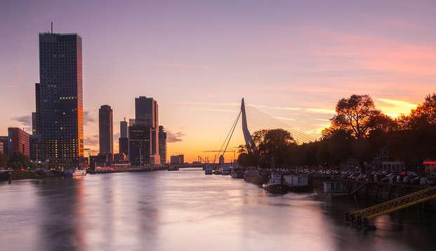 Descansa plácidamente cerca de Rotterdam