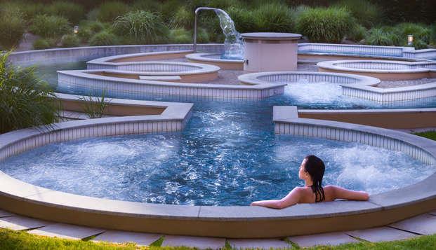 Hotel Lyon Metropole Spa - Hydrojet