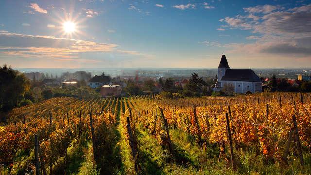 Week-end au coeur de la Bourgogne