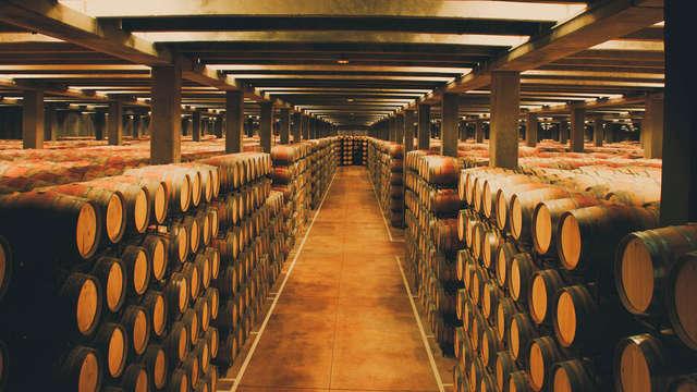 Escapada romántica en Tudela con visita a la Bodega de Marqués de Montecierzo (desde 2 noches)