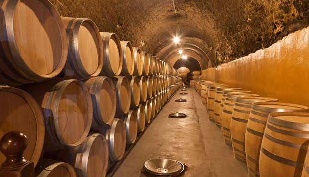 Saborea la Toscana con una degustación de vinos en la famosa granja Corbucci