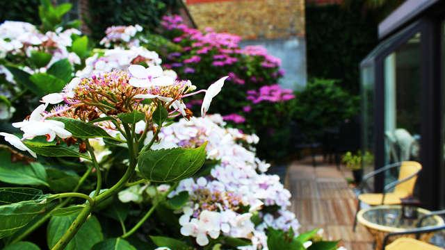 Hotel Montovani - Garden