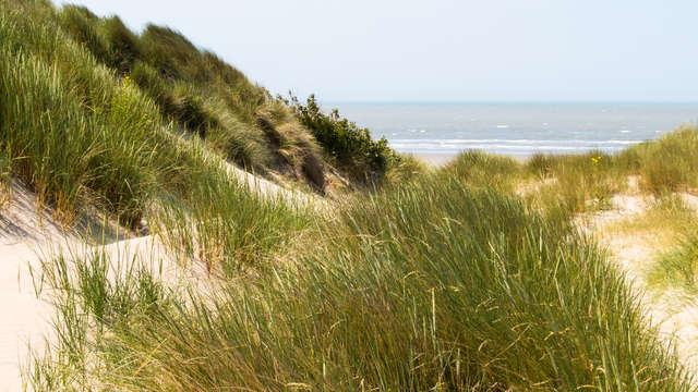 Profitez d'une journée en famille sur la plage à Nieuport (pour 4 pers.)