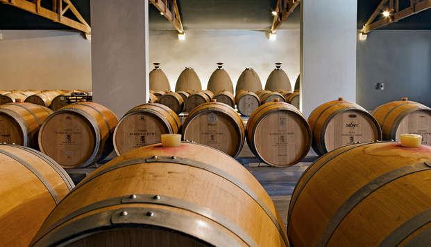 Cata de vino y visita al Château de Marquis de Terme