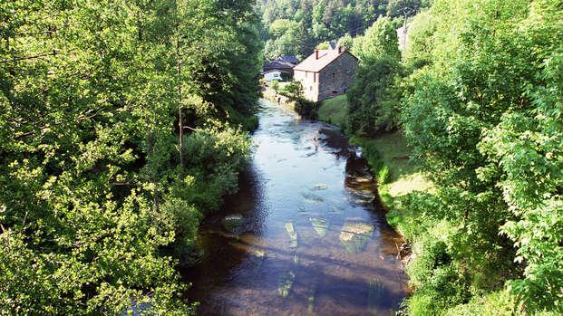 Genieten tussen het groen in het hart van de Ardennen
