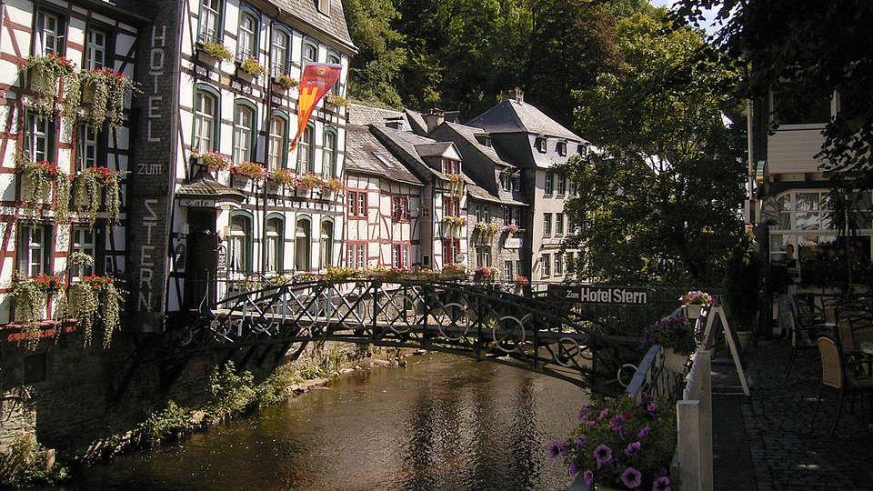 Michel & Friends Hotel Monschau - edit_monschau3.jpg
