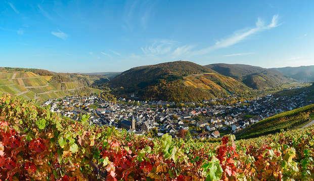 Culinair genieten en pure ontspanning in de groene heuvels bij Bonn (3 nachten voor de prijs van 2)