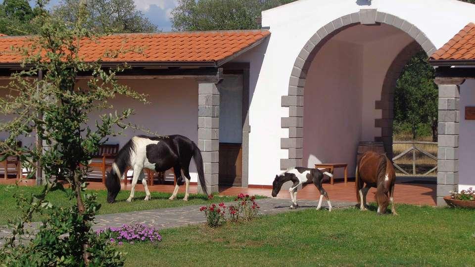 Hotel Su Baione - EDIT_horses1.jpg