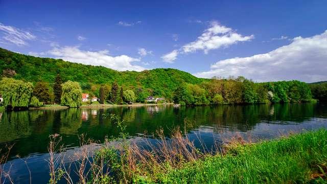 Echappée verte au coeur des Ardennes belges avec panier pic nic