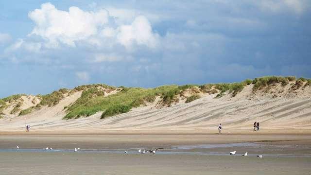 Profitez du luxe et du confort sur la côte de Noordwijk