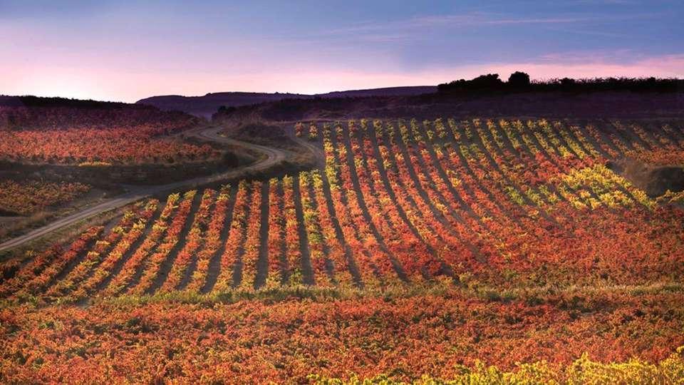 ETH Rioja  - EDIT_destination4.jpg