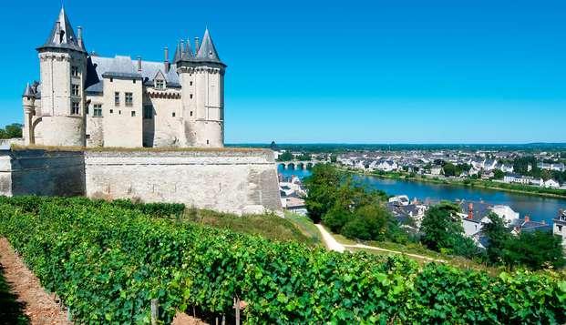 Détente et vue imprenable sur la Château de Saumur