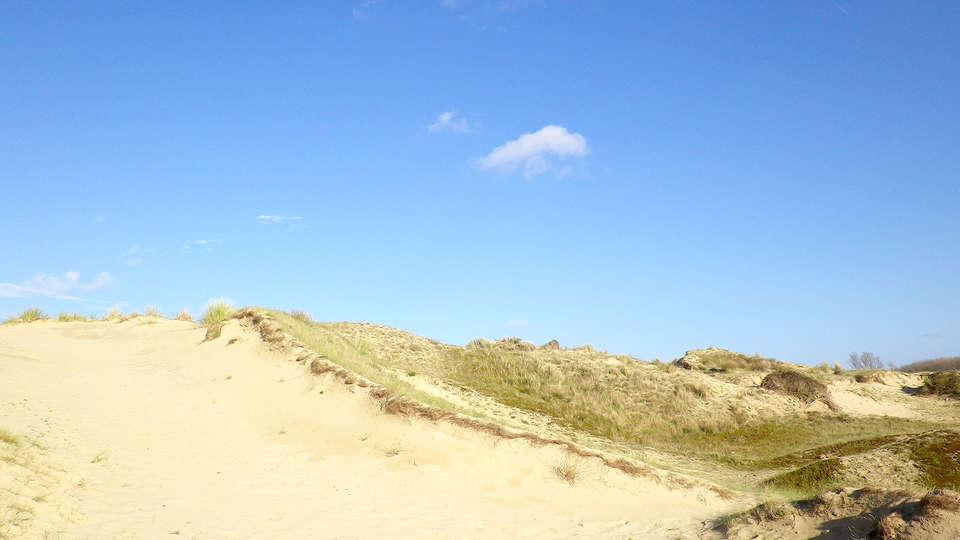 Evancy Bray-Dunes Étoile des Dunes - Edit_Destination2.jpg