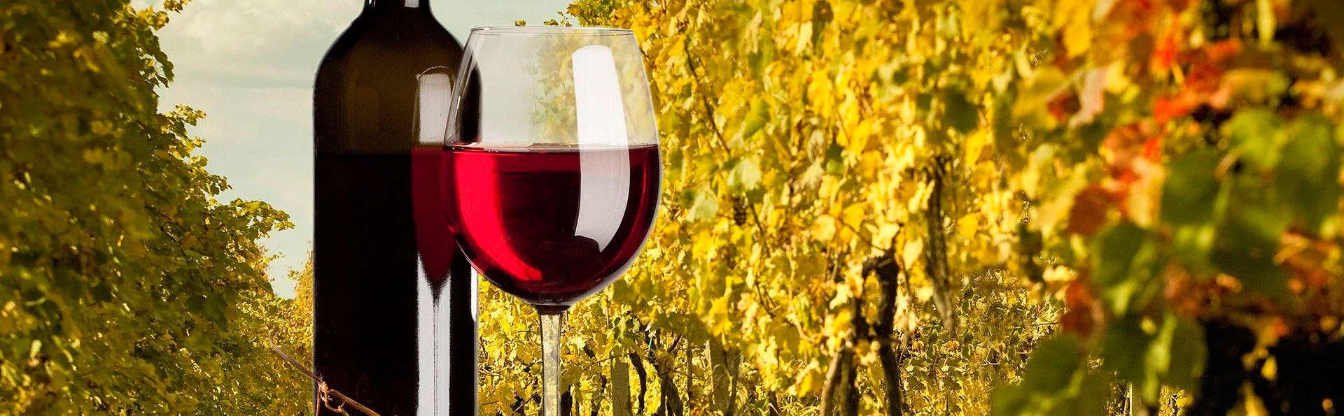 Escapada Enológica en habitación superior con visita a 2 bodegas y cata de vinos Navarros