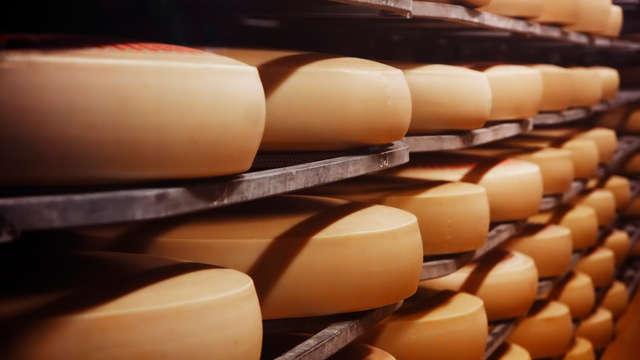 Visita a la quesería Bikain