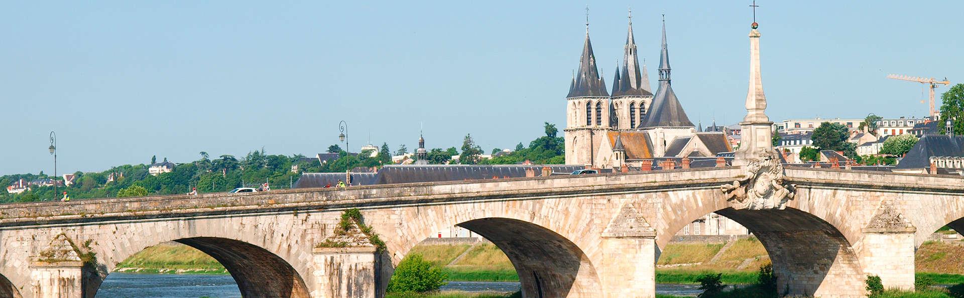 Découvrez la vallée des châteaux de la Loire
