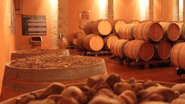 Wijn deal: Geniet van de wijnen uit de Ribera de Duero tijdens een proeverij